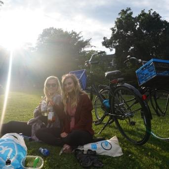Picnics in Vondelpark